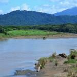 Costa Rica Rivers Tarcoles