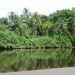 Corcobado National Park