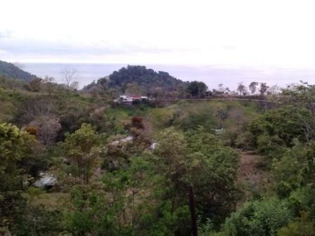 Puntarenas Province Quepos costarica