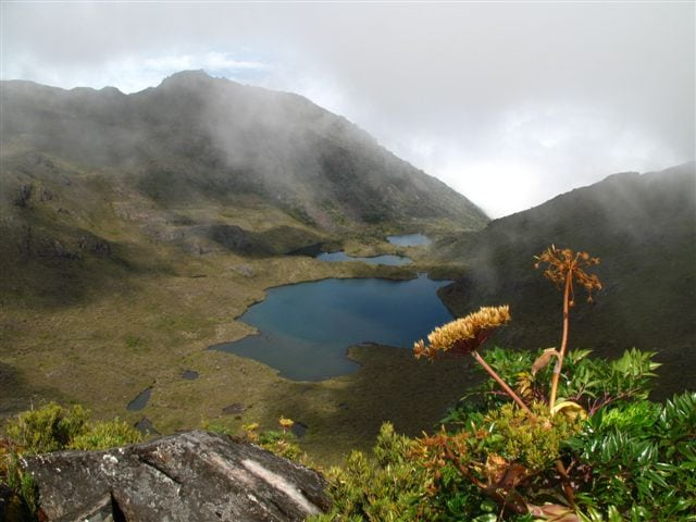 Costa Rica Chirripo paramo National Park