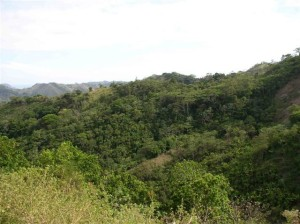 Jaco Costa Rica Property for Sale